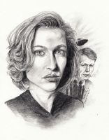 Scully by avaunt