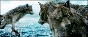 Wolfpack by D-E-S-T-I-N-Y-0105