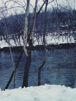 Snowfall on a river. by CindyLouWhoXox