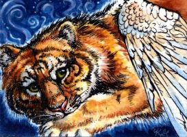 Feathers and Stripes ACEO by Amaranth44