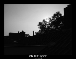ON THE ROOF by Harumi-zanza