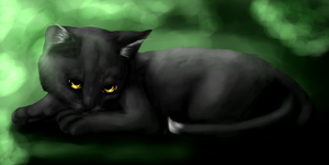 Ravenpaw by BlackLightning95