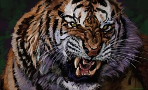 tiger painting by nosoart