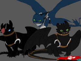 FANART:HTTYD-Night Furies of Berk by BlackDragon-Studios
