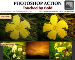 Touched by Gold Photoshop Action by MrHighsky
