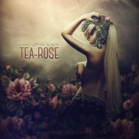 Tea-rose. ALBUM COVER by push-pulse