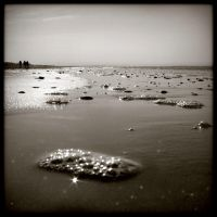 Plage - balade matinale by Renoux