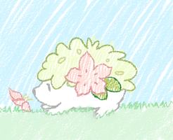Shaymin by sweetinsanity364