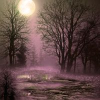 Moonlight lagun premade BG by StarsColdNight