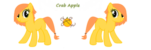 Crab Apple's ref by charityanna