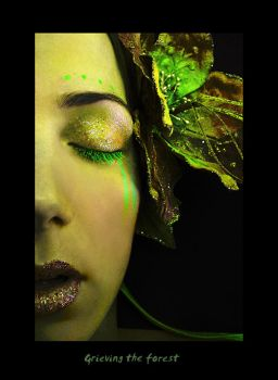 Grieving the forest by ftourini
