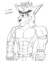 My style of Crunch Bandicoot by JediBandicoot