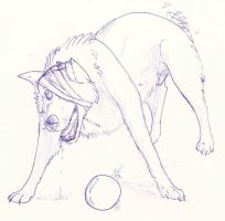 trow me a ball by sidca