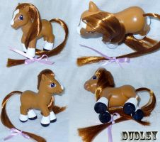 Dudley Real Horse Custom Pony by mayanbutterfly