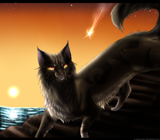 :Video Killed the Radio Star: by eliza1star