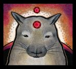 Northern Hairy Nosed Wombat as Totem by Ravenari