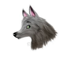 Wolf :3 by Pixel-Candy