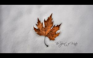 The Spirit of Winter by PortraitOfaLife