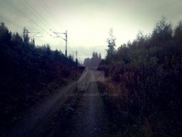road. by JhoLc