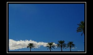 Vegas Sky by martinshiver