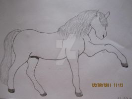 Horse by 666Grimreaper666