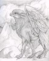 another griffi by ashtinwolf