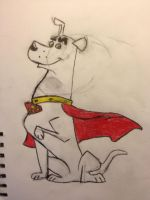 Krypto by Devilsfan617