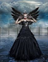 Black Swan by Capricuario