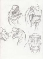 Dino Faces by VenomEXsoldier