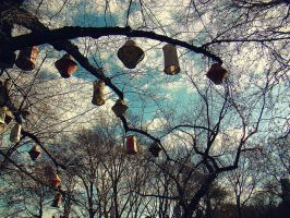 Paper Lanterns in Central Park by goodbyeLOVE