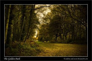 A Golden Path by Andrew-and-Seven