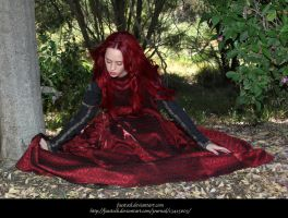 Rose Red9 by faestock