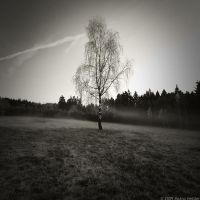 Days Gone By by MarcoHeisler