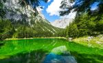 Sunlight in the Green by hannes-flo