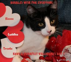 BUBBLES  Happy Valentines Day Everyone!! by lenslady