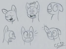Expression practice by chromchill12