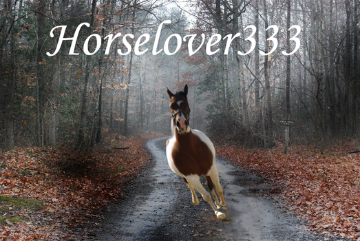 Horselover333 pic by AmekoLove