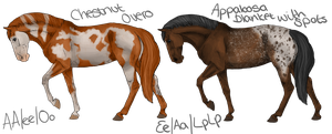 Whiskey-Briar-Farms Designs by EquineRibbon