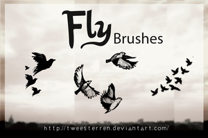 Brushes. Fly By. TweeSterren by TweeSterren