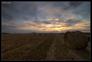 Rural Sunset by stetre76