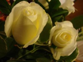 White Rose 2 by versaillesjewels