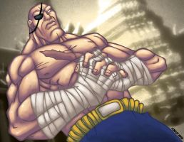 Street Fighter - SAGAT by GONZZO