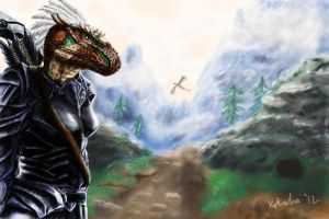 Storm Fury Dragonborn 2 by blackdragon21