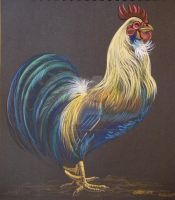 Rooster Pencil Sketch 1 by HouseofChabrier