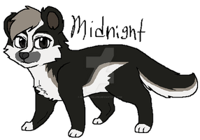 Midnightbadger by Purrple-Kat
