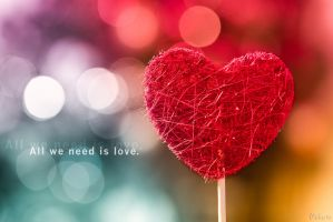 All we need is love by peka-photography