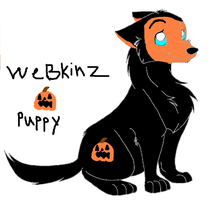 webkinz pumpkin puppy by webkinzfun8