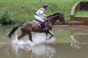 3DE Cross Country Water Obstacle Series X/19 by LuDa-Stock