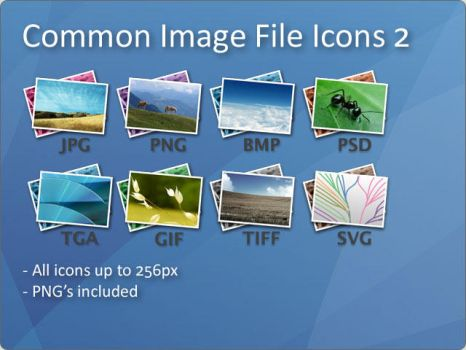 Common Image File Icons 2 by docmiller