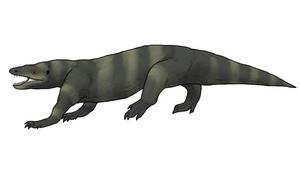 Megalania prisca by WSnyder